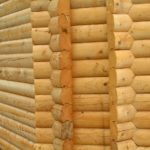 Выбираем материал для постройки бани и печи